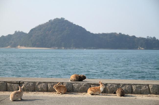 okushima