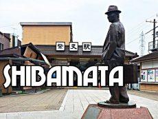 1 Day Trip เที่ยวถิ่นลับ Shibamata สัมผัสอีกหนึ่งย่านวินเทจโตเกียว ที่ไม่เหมือนใคร