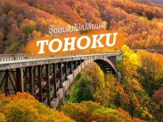 5 จุดชม ใบไม้เปลี่ยนสี โทโฮคุ ที่คนคูลๆ เขาไปกัน