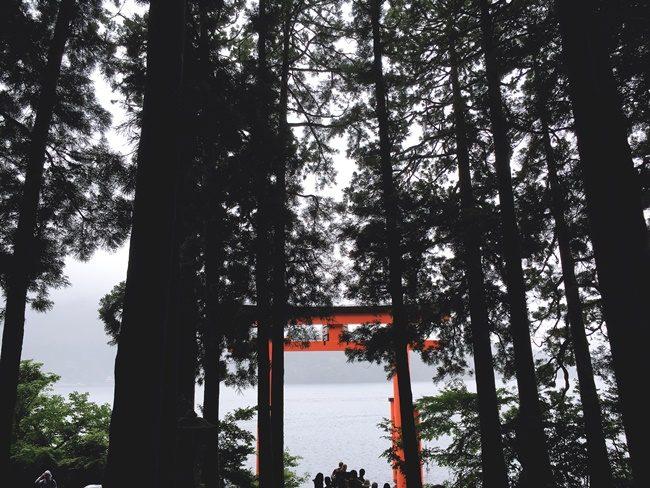 reveiw Hakone