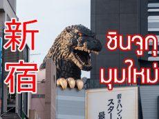 ที่เที่ยวชินจูกุ 7 มุมชิค เที่ยวครบรสย่านเด็ดโตเกียว