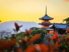 แบกกล้องเที่ยว เกียวโต โอซาก้า 3 วัน 2 คืน กับวิวดาวล้านดวงและดื่มด่ำกับความเป็นญี่ปุ่นให้คุ้ม(EP2)