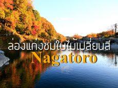 ล่องแก่งชม ใบไม้เปลี่ยนสี ไซตามะ เพลิดเพลินกับธรรมชาติที่ Nagatoro