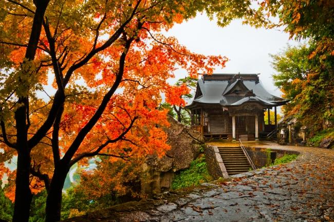 ใบไม้เปลี่ยนสี โทโฮคุ
