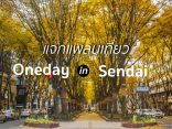 แจกแพลน 1 Day Trip เที่ยวมิยางิ สุดฟิน In Sendai เก็บครบทั้งช้อป ชิม ชิล!のサムネイル