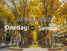 แจกแพลน 1 Day Trip เที่ยวมิยางิ สุดฟิน In Sendai เก็บครบทั้งช้อป ชิม ชิล!