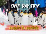 One day trip ฮอกไกโด ทริปอบอุ่นหัวใจในเมืองหนาว อาซาฮิยาม่า และ บิเอะ