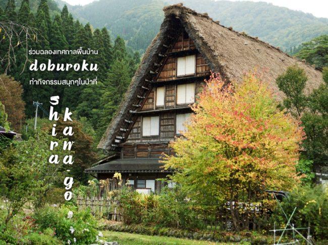 ร่วมฉลองเทศกาลพื้นบ้าน Doburoku ทำกิจกรรมสนุกๆในป่าที่ TOYOTA Shirakawa-Go Eco-Institute