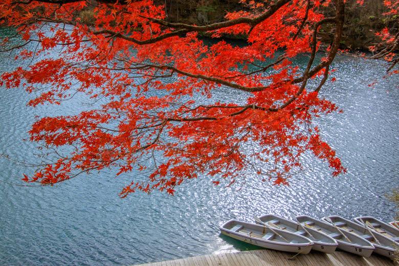 โกะชิกินุมะ (บึงน้ำ 5 สี)