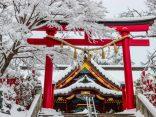 ชมภูเขาทาคาโอะสามฤดูกาล ใบไม้เปลี่ยนสีและหิมะชานเมืองโตเกียว