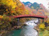 แนะนำพาส YUTTARI AIZU TOBU FREE PASS เที่ยวได้ไกลจากอาซากุสะ Nikko ไปถึงฟุคุชิมะ!