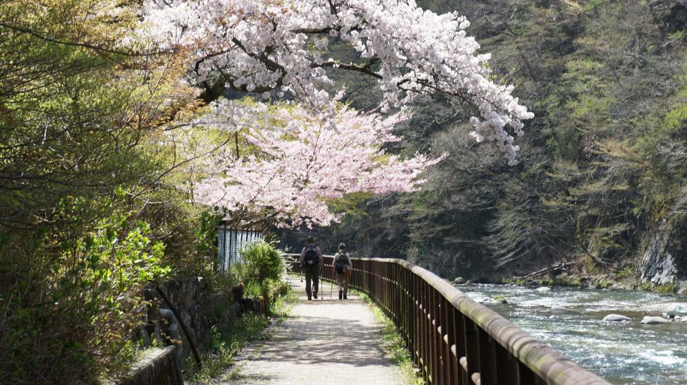 เมืองชนบทใกล้โตเกียว
