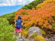 พาเที่ยวสุดยอดสถานที่วิวสวยอลังในนากาโนะ  EP 3 โนริคุระ ภูเขาหลากสีสัน อินทุกฤดู