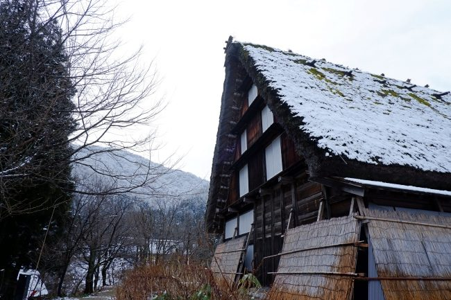 หมู่บ้าน ชิราคาวาโกะ
