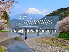 8 แลนด์มาร์ก Fujinomiya อีกหนึ่งเมืองฟูจิสวยประทับใจ เดินทางได้จากโตเกียว