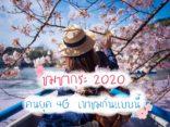 พาชม ซากุระ 2020 แบบออนไลน์ เรียลทาม ช่วงโควิดก็ฟินได้ ด้วยดอกไม้สวยๆ