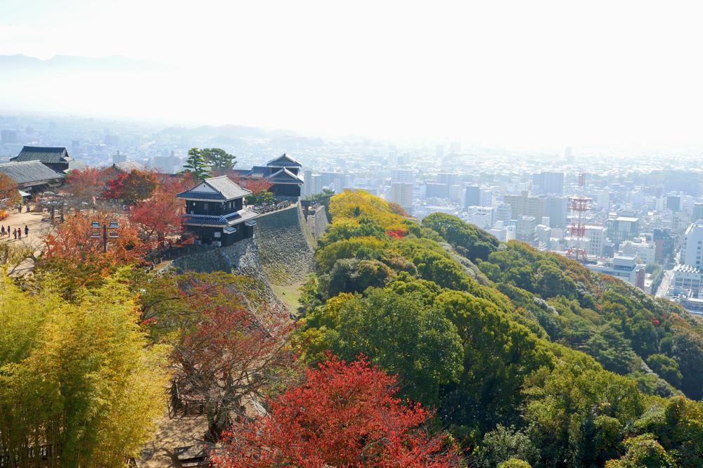 ชิโกกุ