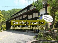 เที่ยวใกล้นาโกย่า พักที่ The ninja mansion ชมดอกไม้พร้อมสนุกกับการเก็บบลูเบอร์รี่ที่ เมือง โทโยตะ