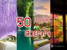 50 วิวญี่ปุ่น สวยตะลึง ที่ต้องไปเยือนสักครั้ง