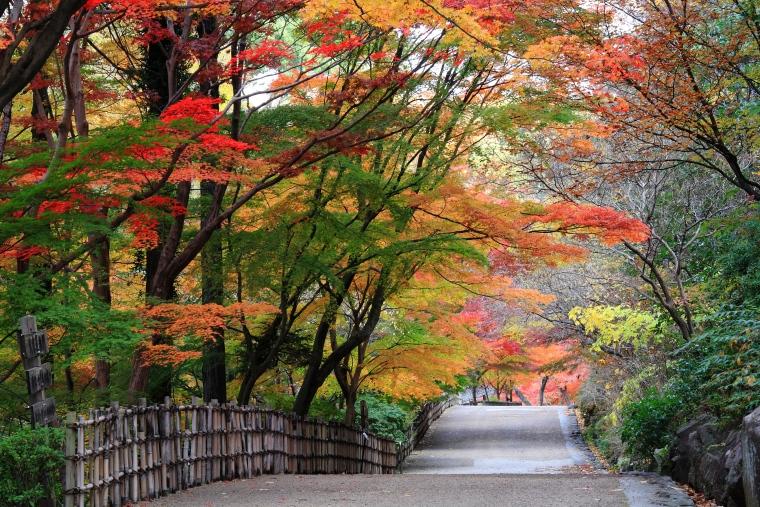 Hisaya-odori Park