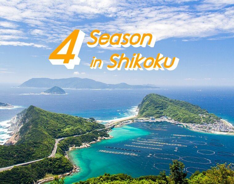 4 ฤดูกาลท่องเที่ยว ภูมิภาคชิโกกุ ทำความรู้จักสภาพอากาศ และสิ่งที่น่าสนใจในแต่ละฤดู