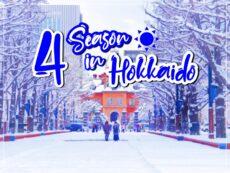 4 ฤดูกาลท่องเที่ยว ฮอกไกโด  ทำความรู้จักสภาพอากาศ และสิ่งที่น่าสนใจในแต่ละฤดู