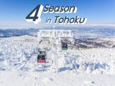 4 ฤดูกาลท่องเที่ยว ภูมิภาคโทโฮคุ ทำความรู้จักสภาพอากาศ และสิ่งที่น่าสนใจในแต่ละฤดู
