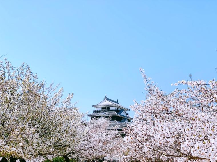 ฤดูกาลท่องเที่ยว ภูมิภาคชิโกกุ