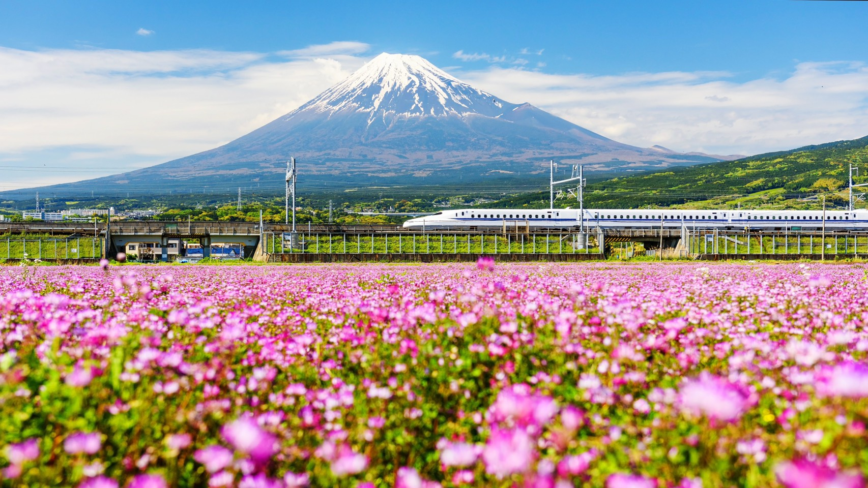 ฤดูกาลท่องเที่ยว ภูมิภาคคันโต