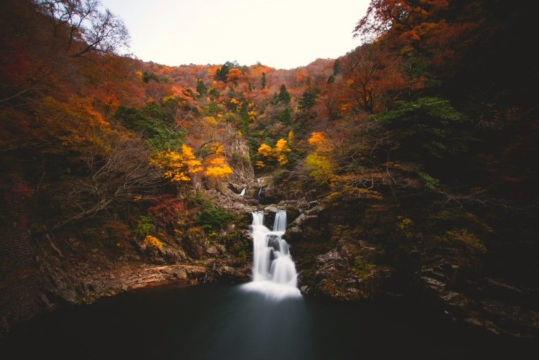 ฤดูกาลท่องเที่ยว ชูโกกุ