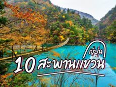 สะพานแขวนญี่ปุ่น 10 พิกัดวิวสวย อลังการ แลนด์มาร์กเด็ด