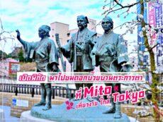 ชมดอกบ๊วยบานตระการตาที่ มิโตะ เที่ยวง่าย ใกล้ Tokyo
