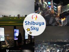 Shibuya Sky  รีวิว จุดชมวิวเด็ด แลนด์มาร์คโตเกียว ฟิน 360 องศา