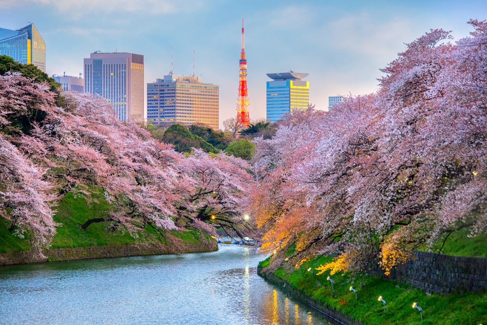 เที่ยวโตเกียว เดือนไหนดี