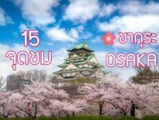 อัพเดท 15 จุดชม ซากุระ โอซาก้า สวยละลานตา น่าประทับใจ