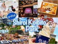 พาเที่ยว โรงงานช็อกโกแลตฮอกไกโด ทำเวิร์กช็อปแสนหวานที่ Shiroi koibito park