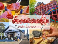 แนะนำเนื้อซากะและสาเกรสเลิศสุดฮิตในร้านอาหารไทย พร้อมพาไปขอพรศาลเจ้าชื่อดังแห่งจังหวัดซากะ