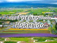 เที่ยว Furano เยือนเมืองดอกไม้ ชิมชีส Hokkaido พร้อมบอกวิธีการเดินทาง