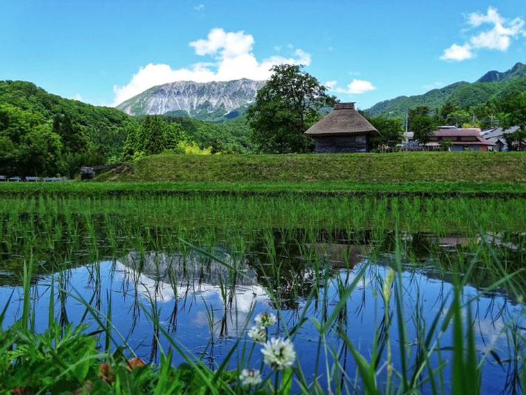 อุทยานแห่งชาติญี่ปุ่น