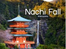 Nachi Fall น้ำตกสวย เคียงวัด Seigantoji แห่งวากายามะ